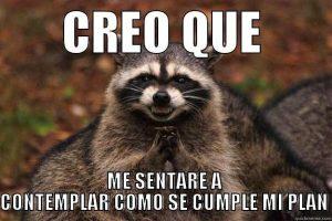 meme de mapache malevolo