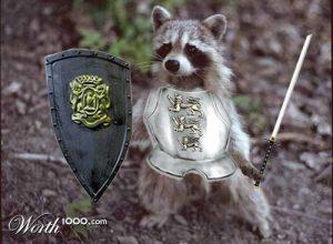 mapache con armadura